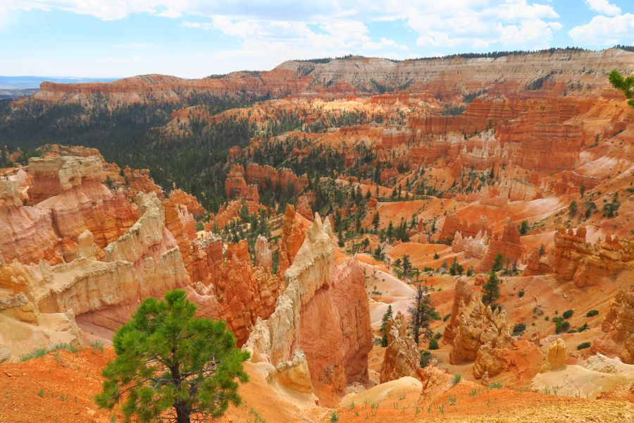 Bryce-Canyon-National-Park-view-amfitheater