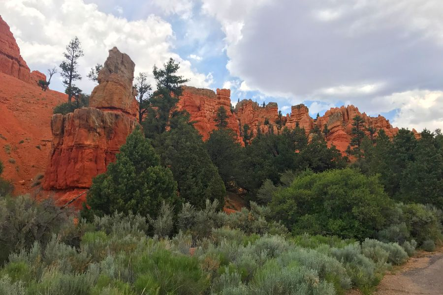 Bryce-Canyon-National-Park-view-road