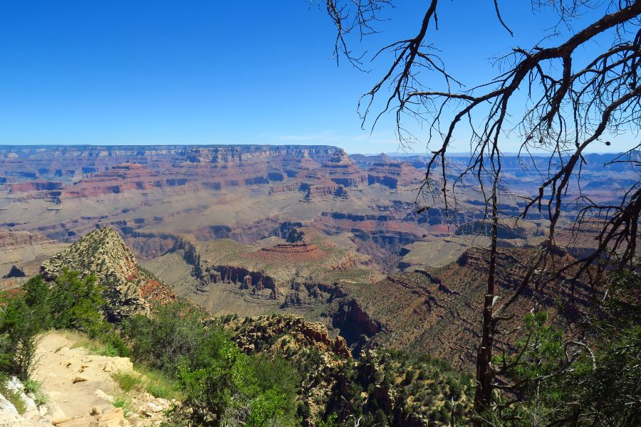 Grand-Canyon-grand-view-point-down-3