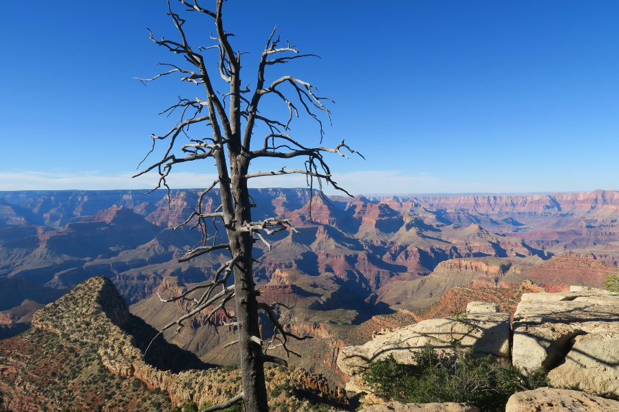 Grand-Canyon-grand-view-point-day-2